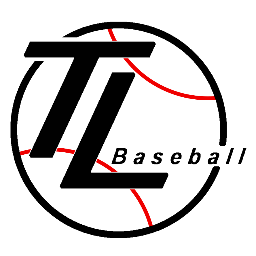 Tim LaVigne Baseball Camp